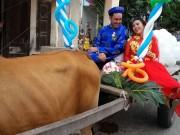 Bạn trẻ - Cuộc sống - Chú rể Tây tự tay đánh xe bò rước dâu tại Bình Thuận