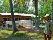 Tin tức trong ngày - Quảng Nam: Bị phạt vì xây nhà tạm chăn vịt
