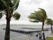 Tin tức trong ngày - Áp thấp có khả năng thành bão đang hướng vào nước ta