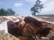 Tin tức trong ngày - Bao bì chất thải chôn ở Đà Nẵng có ghi chữ Formosa