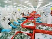 Thị trường - Tiêu dùng - Tôm, cá Việt kiến nghị gỡ khó xuất khẩu hàng sang TQ