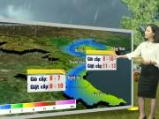 Tin tức trong ngày - Dự báo thời tiết VTV 19/8: Bão Thần Sét gây mưa cực lớn ở Bắc Bộ