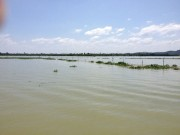 An ninh Xã hội - Kiểm lâm bị đánh dập lá lách trên hồ Trị An