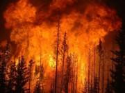Tài chính - Bất động sản - Kinh tế thế giới thiệt hại 71 tỷ USD vì rủi ro thiên tai