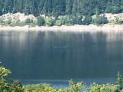 Phi thường - kỳ quặc - Du khách chụp được ảnh quái vật hồ Loch Ness?