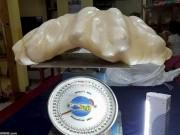 Thế giới - Ngư dân Philippines phát hiện ngọc trai khổng lồ 34 kg