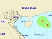 Tin tức trong ngày - Xuất hiện áp thấp nhiệt đới mới trên Biển Đông