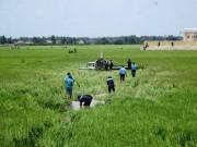 Tin tức trong ngày - Vụ rơi máy bay ở Phú Yên: Do hỏng động cơ