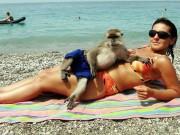 """Tranh vui - """"Chộp"""" những hình ảnh """"hiếm thấy"""" trên bãi biển"""