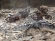 Sét đánh thiêu cháy nhà dân ở Cao Bằng