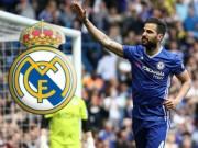 Bóng đá Tây Ban Nha - Tiết lộ: Fabregas ở lại Chelsea vì bị Real chê