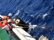 Úc thừa nhận có thể bỏ sót điểm cần tìm kiếm MH370