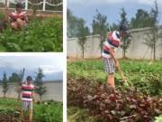 Đời sống Showbiz - Kiếm tiền tỉ, Hoài Linh vẫn tự tay trồng rau nuôi gà