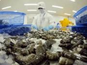 Thị trường - Tiêu dùng - Tôm Việt Nam xuất khẩu sang Mỹ tăng mạnh