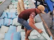 Thị trường - Tiêu dùng - Hãng tàu Hàn Quốc phá sản: Nhiều công ty Việt khốn đốn
