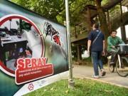 Sức khỏe đời sống - Thái Lan chủ quan trước virus Zika, hàng chục ca nhiễm mới