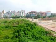 Tài chính - Bất động sản - Mới: Miễn, giảm tiền sử dụng đất trong trường hợp đấu giá