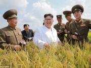 Thế giới - Ảnh Kim Jong-un tươi cười xuất hiện sau đợt lũ lịch sử