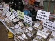 Thị trường - Tiêu dùng - 80% dược liệu nhập khẩu không rõ nguồn gốc