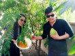 Cận cảnh vườn cây sai trĩu quả trong nhà Quang Lê ở Mỹ