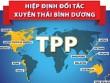 Việt Nam dũng cảm khi tham gia TPP?