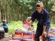 Tài chính - Bất động sản - Nếu Hoàng Anh Gia Lai bán cao su tại Lào…