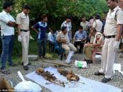 Phi thường - kỳ quặc - Ấn Độ: Chôn chồng dưới sàn nhà vì hết tiền mua mộ