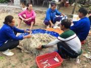 Tin tức trong ngày - Formosa bồi thường người dân thấp nhất 2,91 triệu đồng/tháng