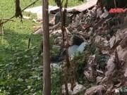 Video An ninh - 95% ao, hồ và đầm của Hà Nội bị ô nhiễm