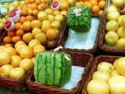 Thị trường - Tiêu dùng - Trái cây độc lạ giá hàng chục nghìn USD hút khách
