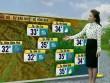 Dự báo thời tiết VTV 7/8: Bắc Bộ chấm dứt chuỗi ngày mưa dông diện rộng