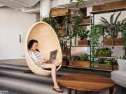 Tài chính - Bất động sản - Ghé thăm văn phòng làm việc đáng ao ước nhất nhì thế giới