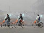 LẠ: Xe đạp tự hút khí ô nhiễm, nhả ra khí sạch