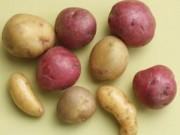 Sức khỏe đời sống - 5 thực phẩm quen thuộc không nên bảo quản tủ lạnh