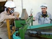 Tài chính - Bất động sản - Mỏ vàng hoạt động trở lại dù vẫn nợ thuế