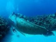 """Du lịch - Khám phá kho xác tàu đắm ở """"tam giác quỷ"""""""
