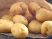 """Sức khỏe đời sống - Khoai tây mọc rễ trong """"vùng kín"""" cô gái"""