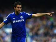 Bóng đá - Dù bị la ó nhưng Fabregas mãi yêu Arsenal