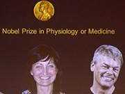 Tin tức trong ngày - Công trình về GPS não bộ đoạt giải Nobel Y học 2014