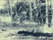 Video An ninh - Đường về nẻo thiện của ông trùm đạo Ty (Phần 1)