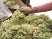 Video An ninh - TP.HCM: Nho lạ xuất hiện tràn lan trên thị trường