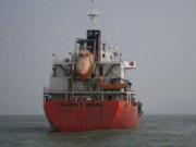 Tin tức trong ngày - Lời khai của thuyền viên tàu Sunrise không thống nhất