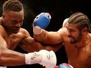 Thể thao - Boxing: Võ sỹ trẻ đang lên thách thức đàn anh