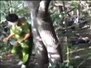 Video An ninh - Hung thủ giết nữ nhân viên tiệm vàng sa lưới