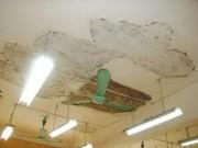 Video An ninh - Long An: Sập trần nhà, 6 học sinh mẫu giáo bị thương