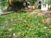 An ninh Xã hội - 30 phút phát hiện 2 xác chết trên sông Sài Gòn