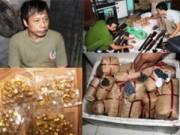 An ninh Xã hội - Thanh Hóa: Phá lò sản xuất súng tự chế quy mô lớn