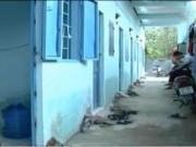 Video An ninh - Nhà trọ sinh viên – Miếng mồi ngon cho đối tượng trộm cắp
