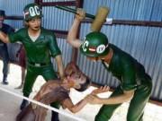 """Du lịch - Những """"địa ngục trần gian"""" nổi tiếng của du lịch Việt"""