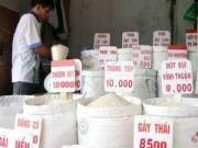 Thị trường - Tiêu dùng - Xuất khẩu gạo ưu đãi người ngoài?